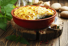 Potato casserole with meat and nettle Royalty Free Stock Photography