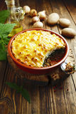 Potato casserole with meat and nettle Royalty Free Stock Photo