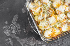 Potato casserole with sour cream sauce, vegetables and herbs, sp Royalty Free Stock Photos