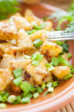 Potato with cheese and greens onions on a plate Stock Images