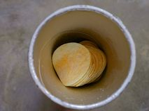 Potato chips. Potato chip  in a paper cylindrical bottle Royalty Free Stock Images