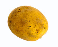 Potato with Clipping Path Stock Image
