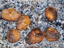 Potato on coals. royalty free stock photo