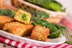 Potato croquettes with spinach and mozzarella. Potato croquettes with spinach and mozzarella on white dish stock images