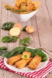 Potato croquettes with spinach and mozzarella. Potato croquettes with spinach and mozzarella on white dish royalty free stock photos