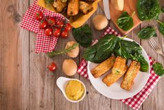Potato croquettes with spinach and mozzarella. Potato croquettes with spinach and mozzarella on white dish stock image