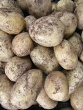 Potato cultivars at a greengrocery Royalty Free Stock Images