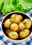 Potato with dill and scalliom Stock Image