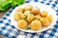 Potato with dill and scalliom Stock Photography