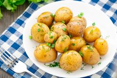 Potato with dill and scalliom Royalty Free Stock Photography