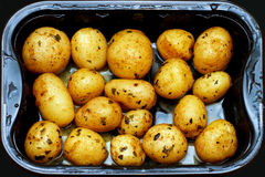 Potato dish royalty free stock photos