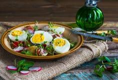 Potato and egg salad. Summer potato and egg salad with vegetables stock photos