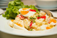 Potato  and eggs salad vegetarian salad Stock Images