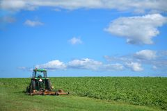 Potato Farm. A farm tractor sitting beside a field of potatoes Royalty Free Stock Image