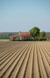 Potato farmland spring house Royalty Free Stock Image