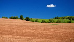 Potato fields, PEI stock photography