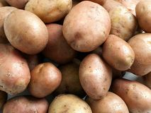 Potato food Royalty Free Stock Photography