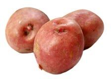 Potato. Fresh potato on white background Stock Photos