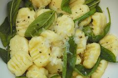 Potato Gnocchi with sage butter sauce. Served with parmesan cheese Royalty Free Stock Images