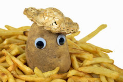 Potato in golden french fries Stock Image