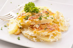 Potato gratin. On the white plate stock photography