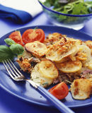 Potato Gratin. Served on a blue plate royalty free stock photo