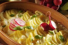 Potato gratin. In a baking dish Stock Images
