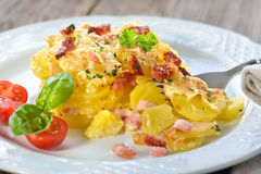 Potato gratin with bacon. Hearty potato gratin with parmesan cheese, cream and delicious cured bacon from South Tyrol freshly served from the oven Royalty Free Stock Image