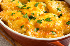 Potato gratin. With cream, cheese and parsley in baking dish stock photo