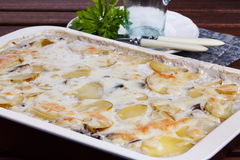 Potato gratin with mushrooms. And mozzarella cheese stock images