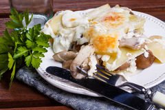 Potato gratin with mushrooms. On a plate royalty free stock images