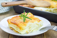 Potato gratin. On a white plate royalty free stock photos