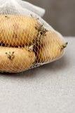 Potato growing long time keep Stock Image
