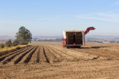 Potato harvester Royalty Free Stock Images