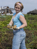 Potato harvesting. The image of the girl having control over a potato Stock Image