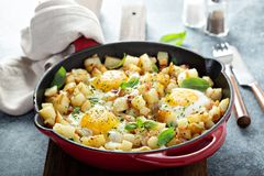 Potato hash with ham and eggs. Potato hash with ham, herbs and eggs for breakfast royalty free stock image