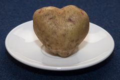 Potato Heart. Root of potato in the form of heart rests on a plate Royalty Free Stock Photos