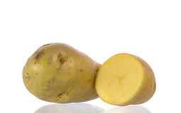 Potato isolated. New potato isolated on white background close up stock photography