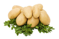 Potato isolated on white Stock Photos