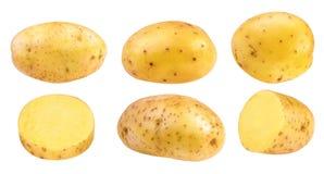 Potato isolated on white. Background royalty free stock photo