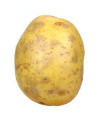 Potato isolated Royalty Free Stock Image
