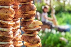 Potato with lard on skewers prepared for roasting on fire at picnic stock photography