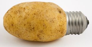 Potato Light Stock Photo