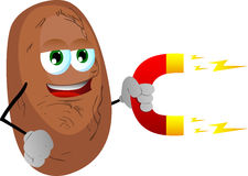 Potato with magnet Stock Photos