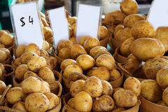 Potato in market. Stock Photos