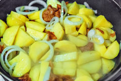 Potato with mushrooms and onion Stock Image