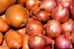 Potato and onions Stock Photography