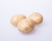 Potato or organic potato on a background. Royalty Free Stock Photos