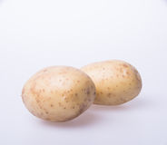 Potato or organic potato on a background. Stock Image