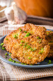 Potato pancakes fried Stock Image